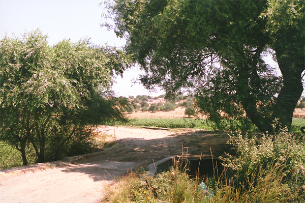 Bridge over the Kalafat Asmak