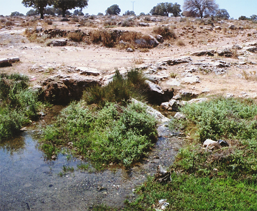 Springs at Pinarbaşi