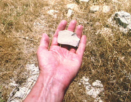 Potsherd from the Lower City of Troy